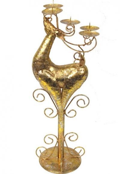 Svietnik zlatý (jeleň)